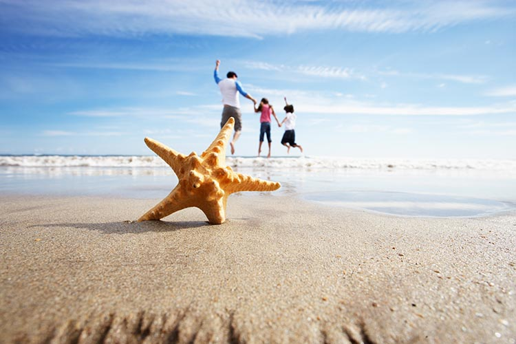 Starfish In Foreground As Father Plays With Children In Sea
