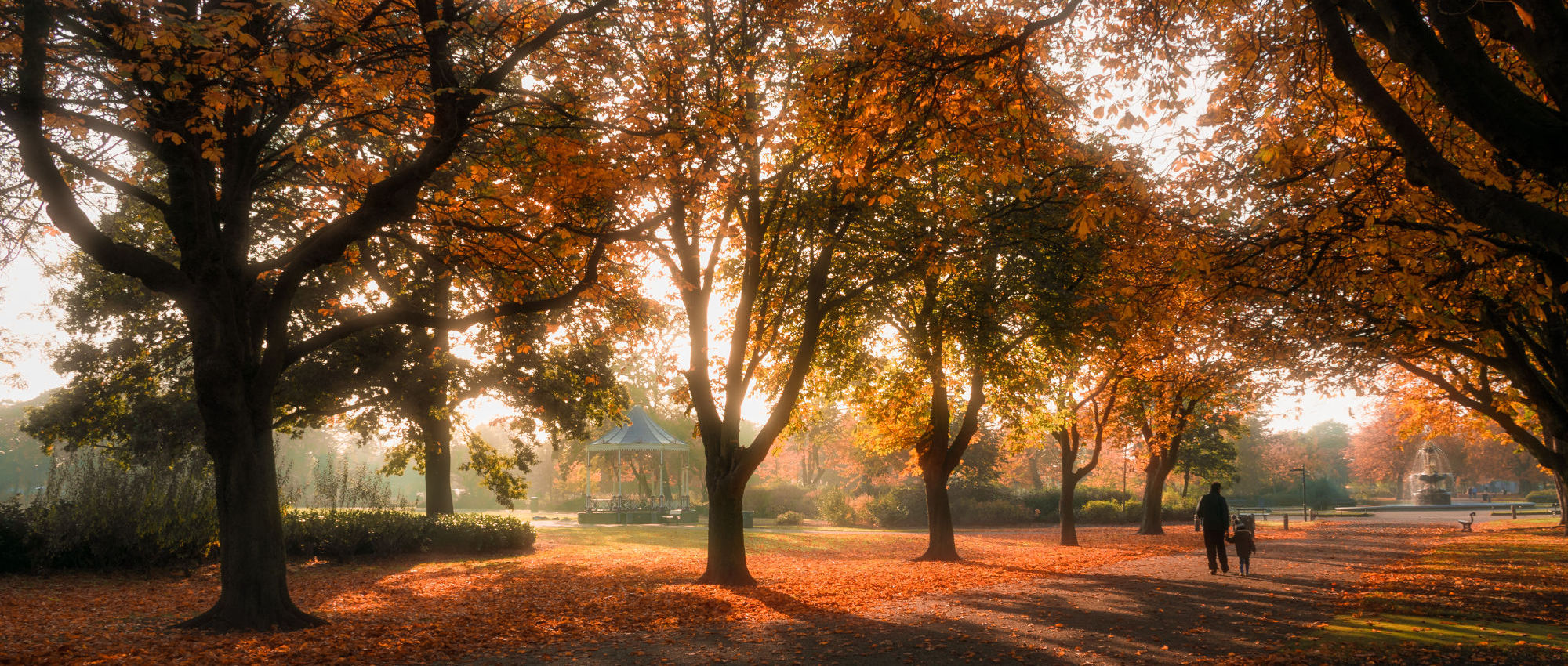 A photo of Albert Park in the autumn with lots of red leaves