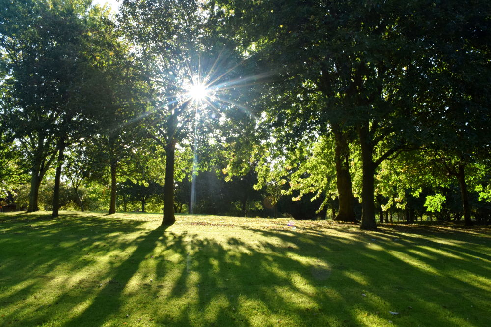 A photo of the grounds at Teesside Crematorium linking to a page about coronavirus safety guidance
