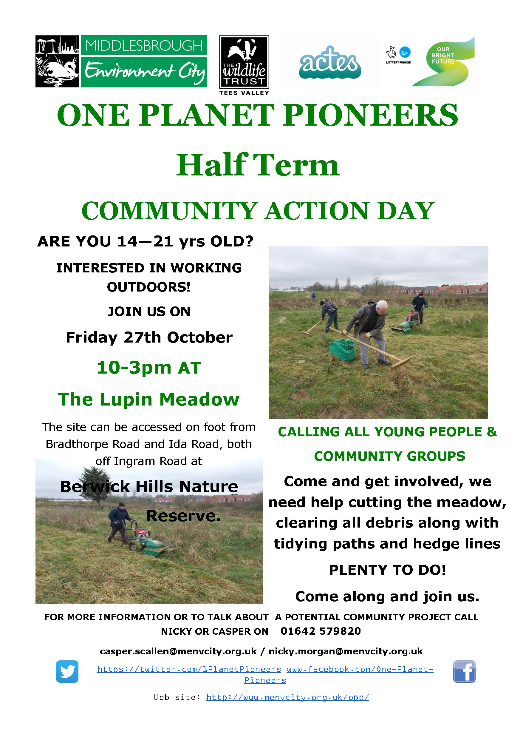 COMMUNITY ACTION DAY MAKEOVER FOR LUPIN MEADOW
